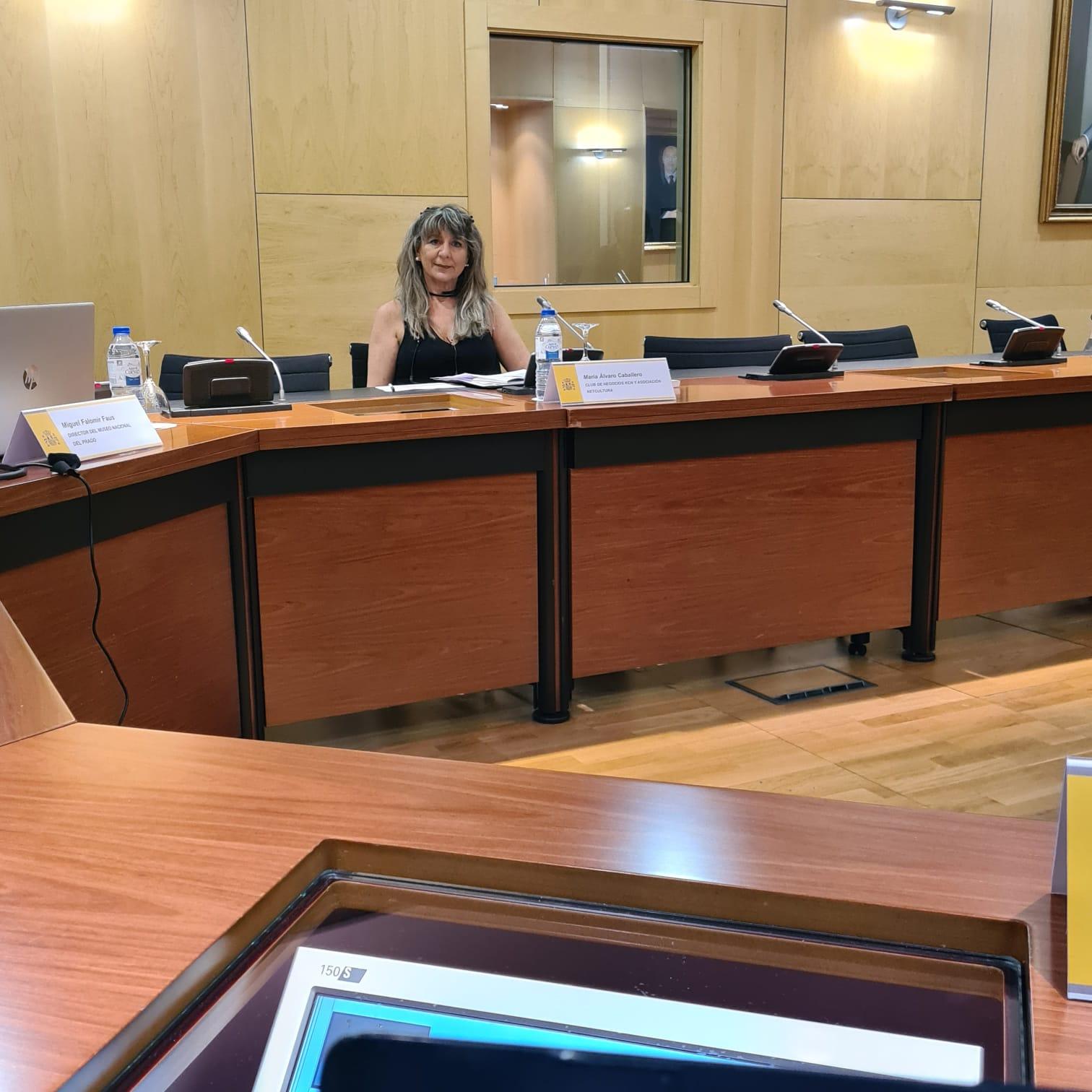 Mc Gestion en Ministerio Derechos Sociales